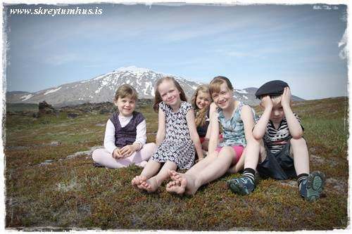 15-www.skreytumhus.is-018