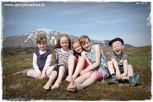 18-www.skreytumhus.is-021